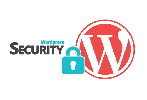 WordPress Web Security